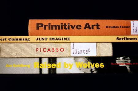 Nina Katchadourian hat ein interessantes Hobby: sorted books